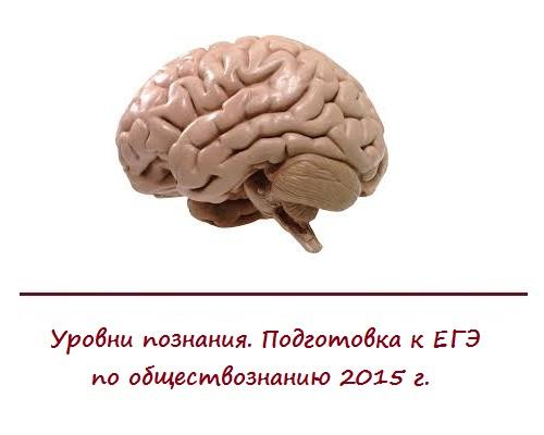 Уровни познания. Подготовка к ЕГЭ по обществознанию онлайн